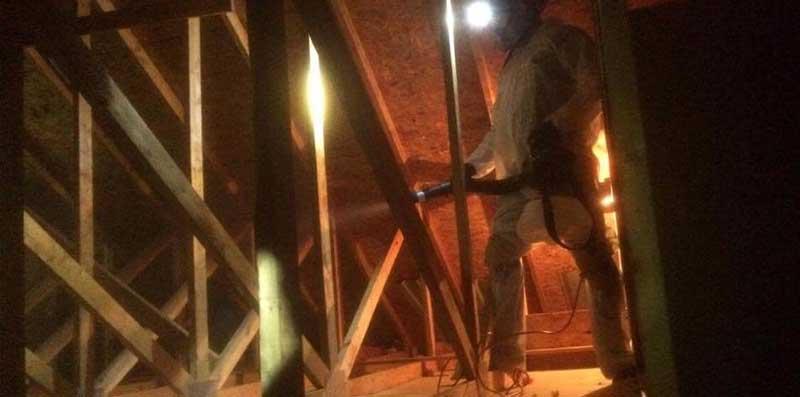 Attic sanitizing at Huron Bat Removal