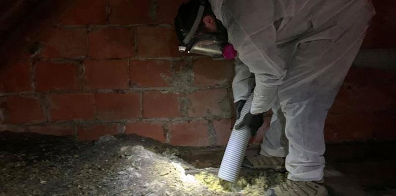 Vacuuming up bat guano
